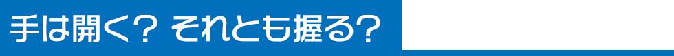 ピッキングフォーム(7)