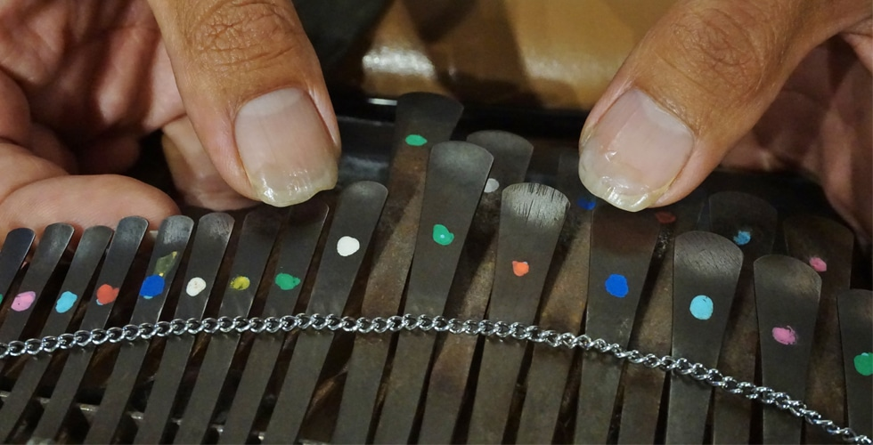 楽器の迷宮【Labyrinth Of Musical Instruments】 親指ピアノ:サカキマンゴー編