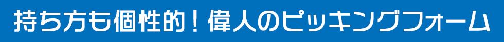 ピッキングフォーム(11)