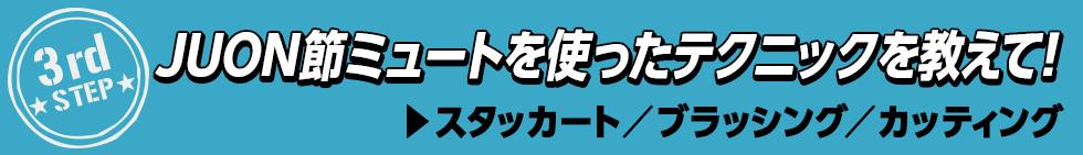 ミュートふしぎ発見!(17)